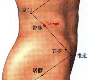Acupuncture Single Point Daimai