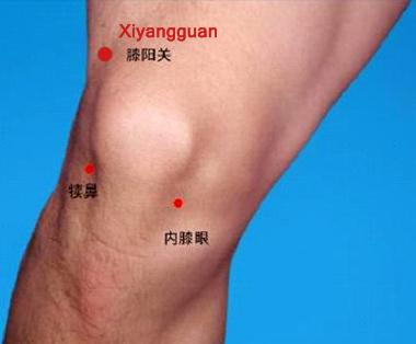 Acupuncture point for Degenerative Arthritis, cystic mass, Xiyangguan